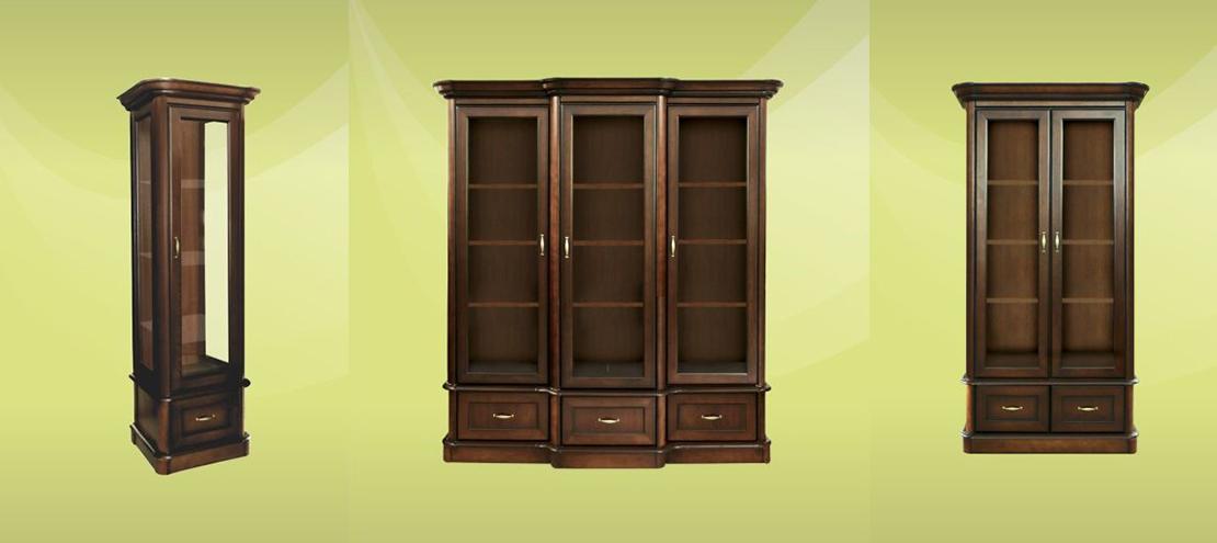 elegancka biblioteczka do salonu, pokoju dziennego lub gabinetu
